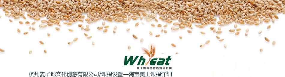 杭州淘宝美工培训-杭州平面设计培训-杭州麦子地教育